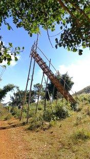 Bamboo rocket ramp