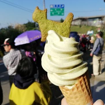 Green tea cat cookie ice